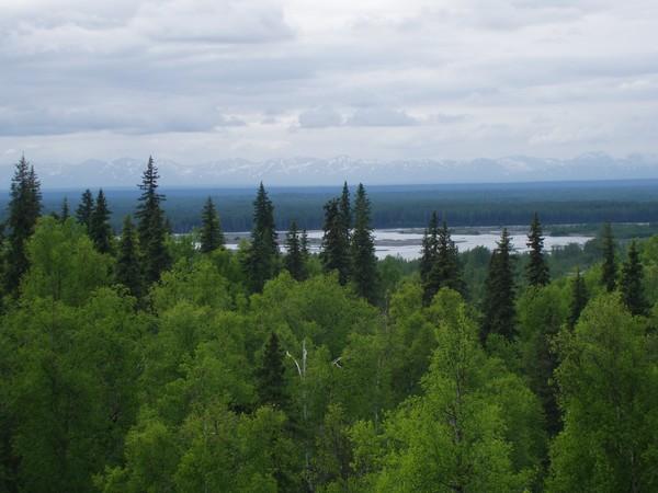 View from Talkeetna, AK Lodge