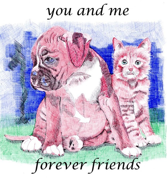 Cat'n dog: forever friends