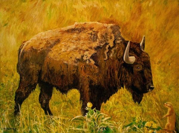 Prairie Companions