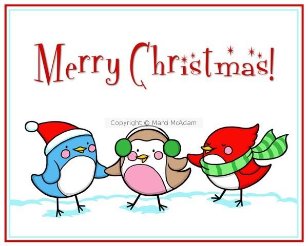 Christmas Bird Trio