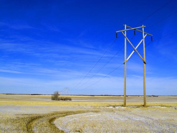 Power Lines-6685