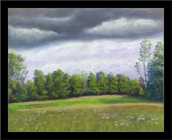 Field At Fletchers Creek