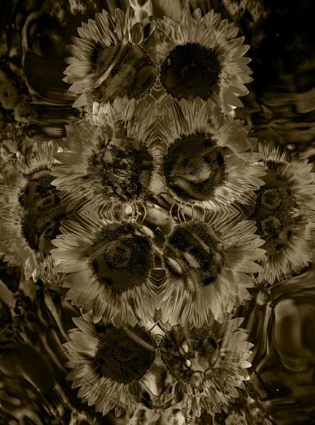 Floral (1a)