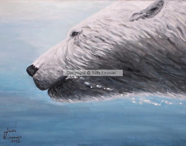 Polar Bear Splash