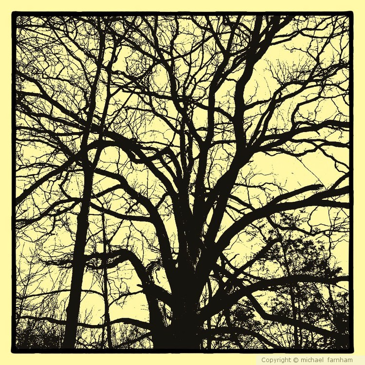 Vintage Black and White Tree