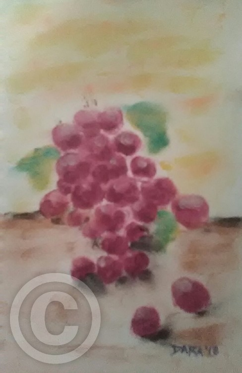 Grapes. On A Table. In The Sun