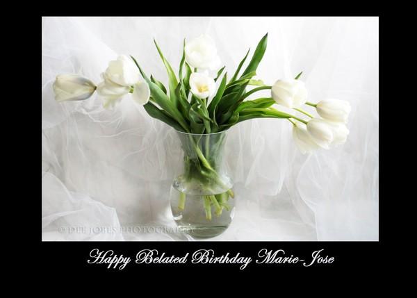 Happy Belated Birthday Marie-Jose