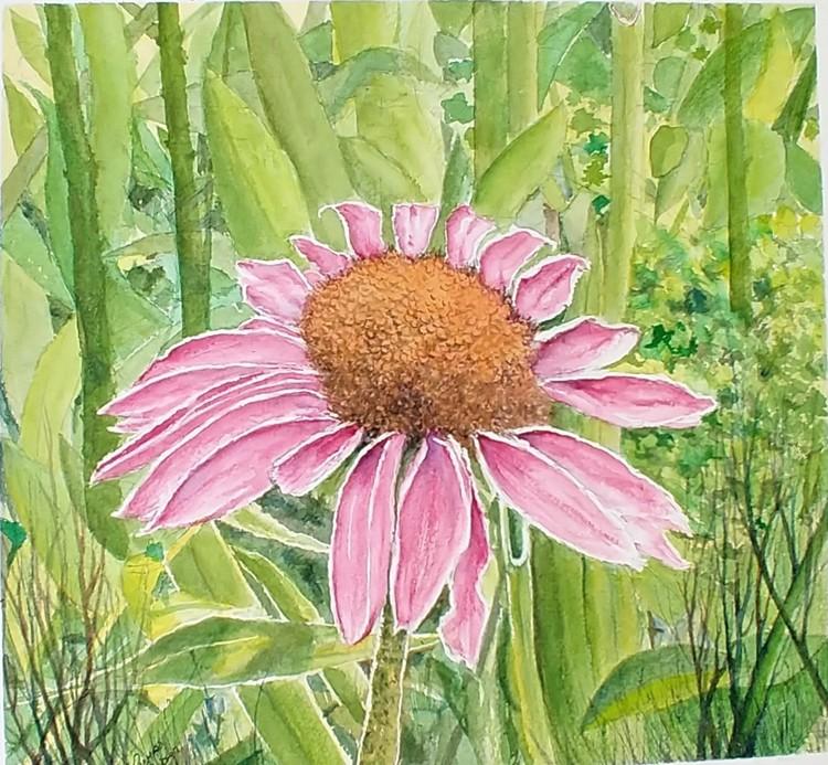 Flower among grasses
