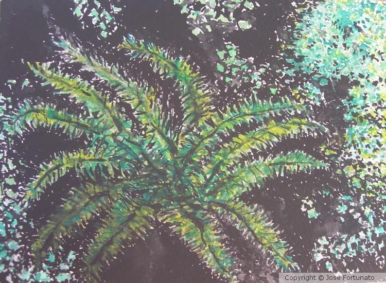 Last Palm Tree