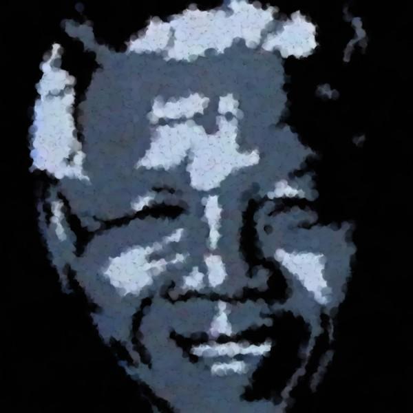 Mandela South African Icon
