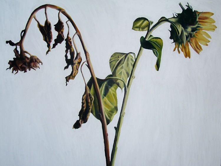 flower painting sunflower paintings artist raphael perez   flowers artworks