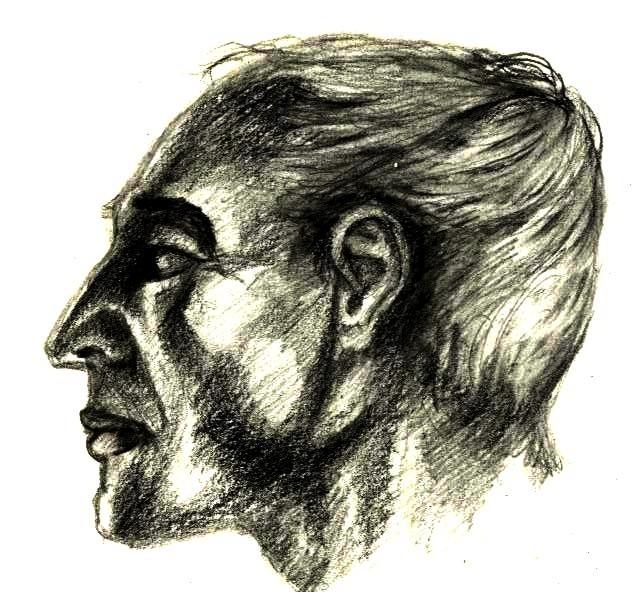 studie Kopf