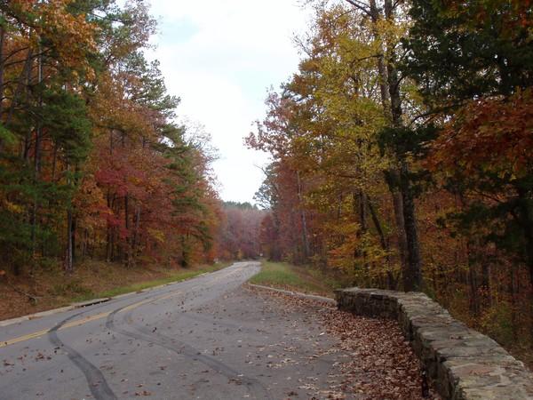 Pig Trail Fall 2008