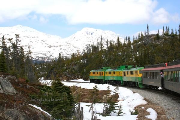 Train in the Alaskan Mountains