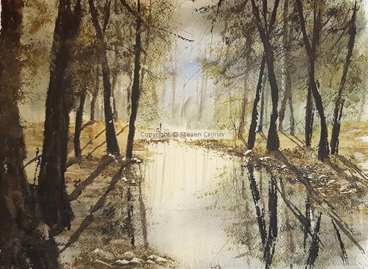 Sutton Park Watercolour Painting by Steven Cronin
