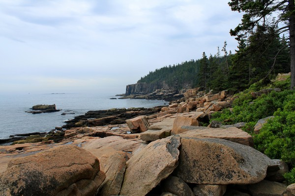 Otter Cliffs at Low Tide