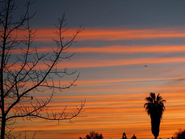 Sunset Lines 2