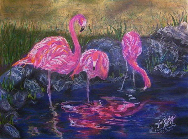 Flamingo Shade