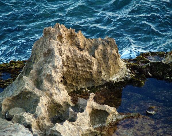 Nature's Sculptures III