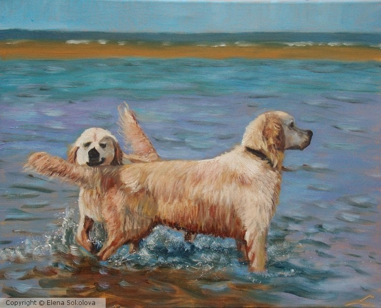 Wet dogs 3