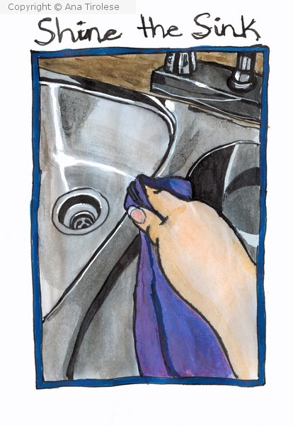 Shine the Sink