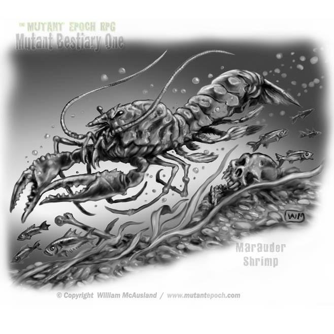 Marauder Shrimp