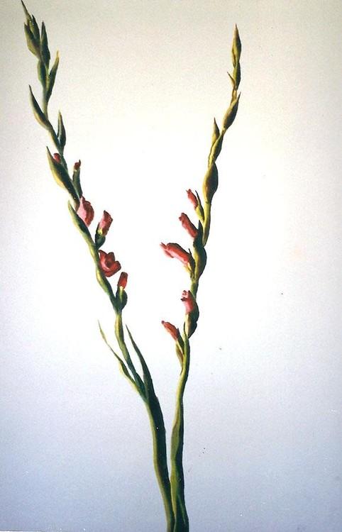 flowers paintings by raphael perez flower painting artworks