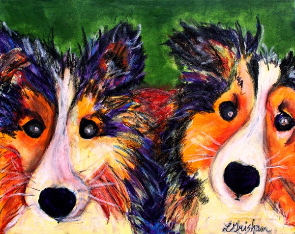 Shelties in Color