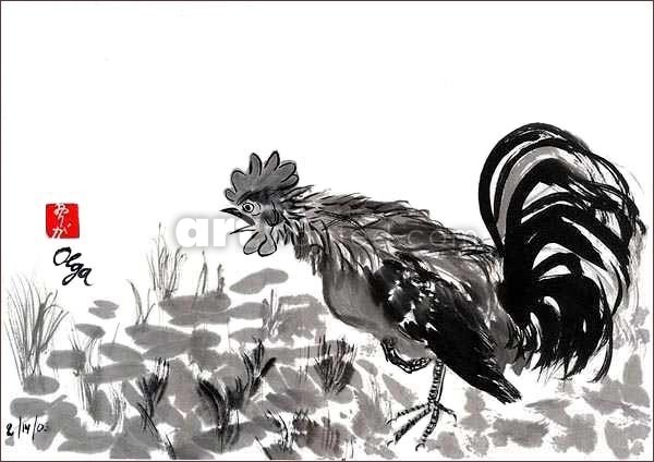 Rooster blatant.