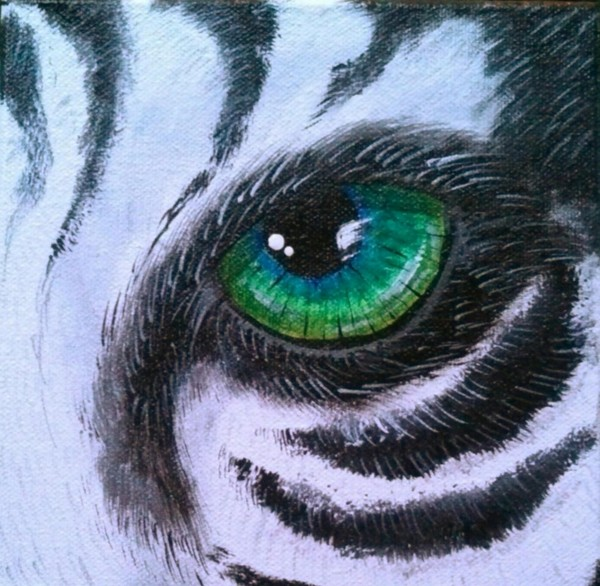 Eye Of The White Tiger 1