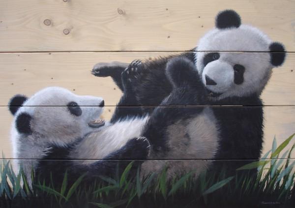 Playing giant panda's