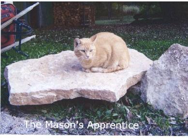 The Mason's Apprentice