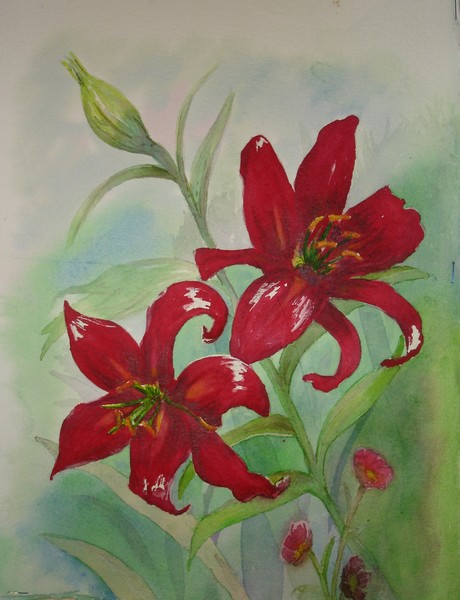 Flowers:  Vibrant Red Brilliance