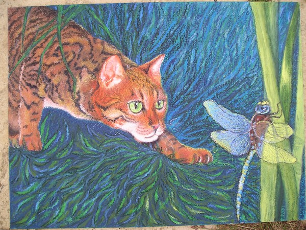 Cat and Dragonfly