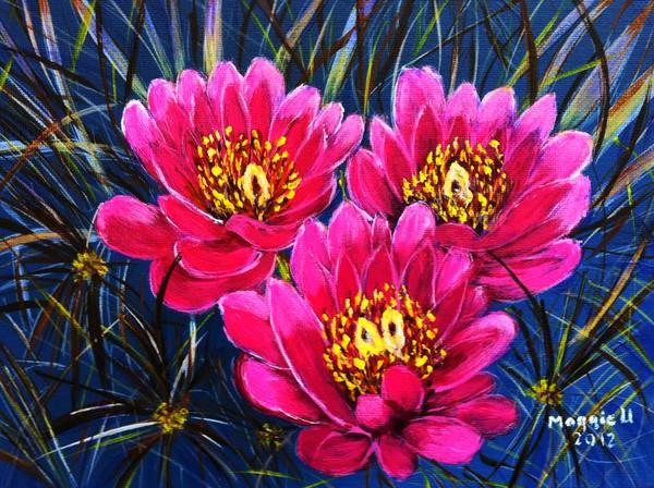 Cactus flowers( close up)