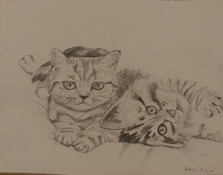 Laying Kitties