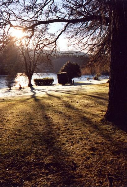 Low Sun in Winter
