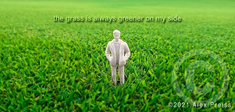 The Grass Is Always Greener On My Side