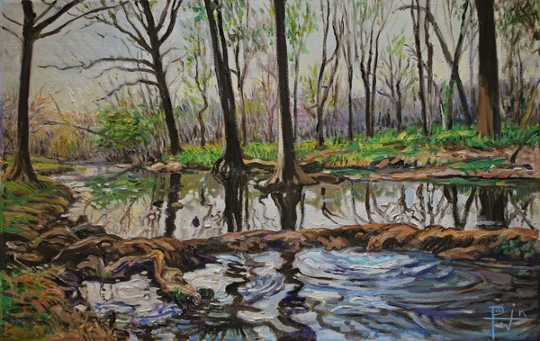 Cypress Creek - Wimberley, Texas