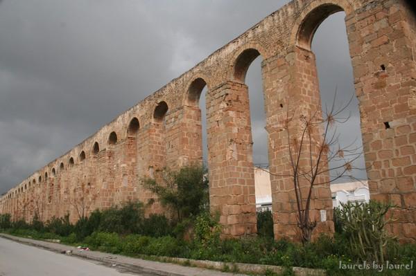 Aqueduct Ruins in Tunis