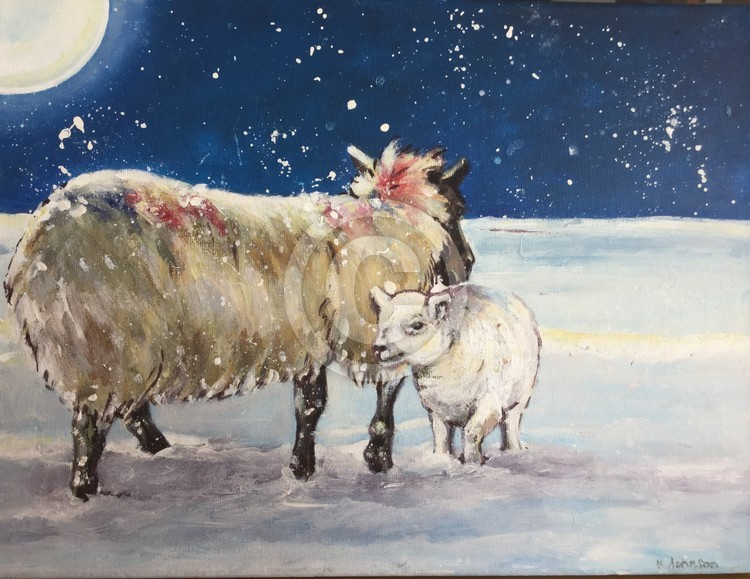 Moonlight sheep