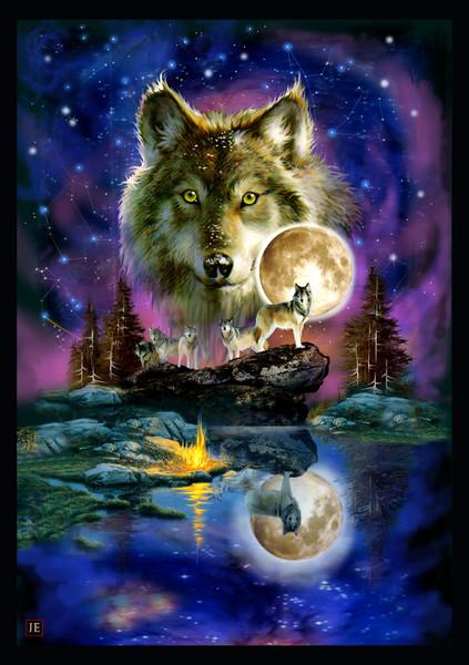 Timber Wolves Full Moon