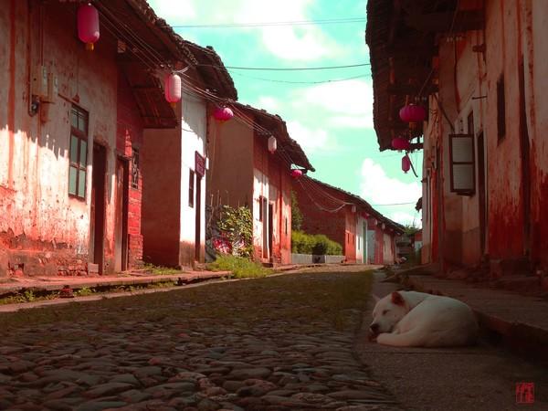 A Street Dreamer
