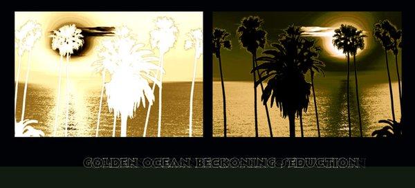 Golden Ocean Becons Seduction