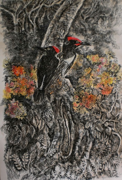 white bellied woodpeckers1