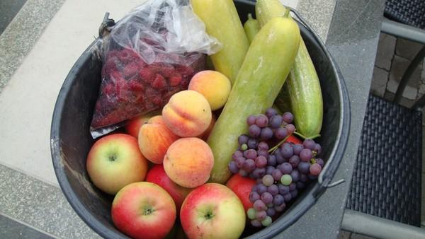Fruit from own garden