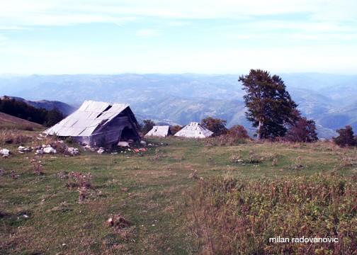 Wooden Huts (Kolibje)