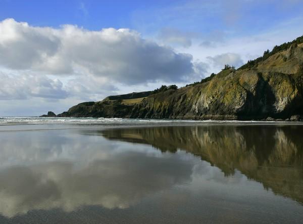 Scene in the Sand
