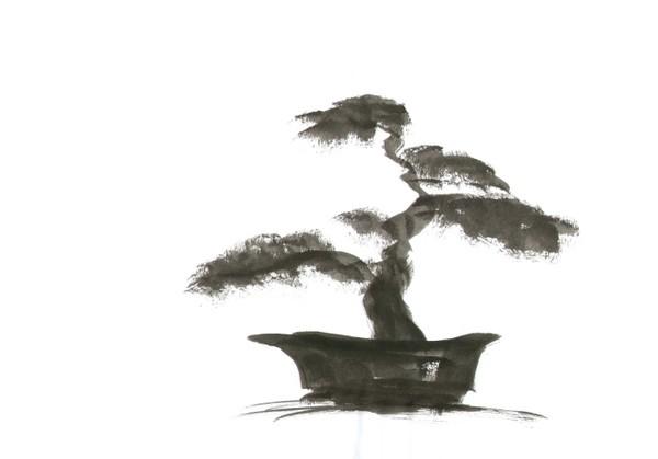 Japanese Gardens 20
