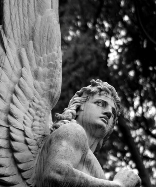 Angelico Romano